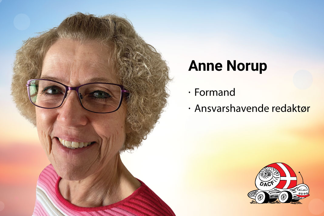 anne norup formand